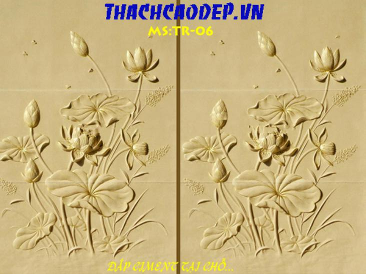 thachcaodepgiare tr06